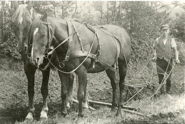 Pflügen 1925